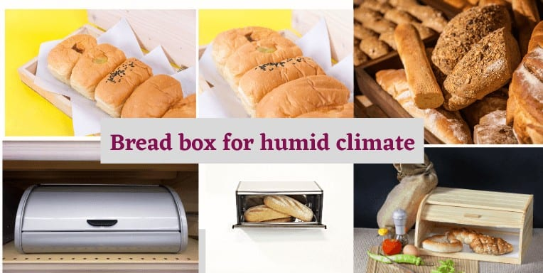 The 10 Best bread box for humid climate [ 2020 Buying Guide]