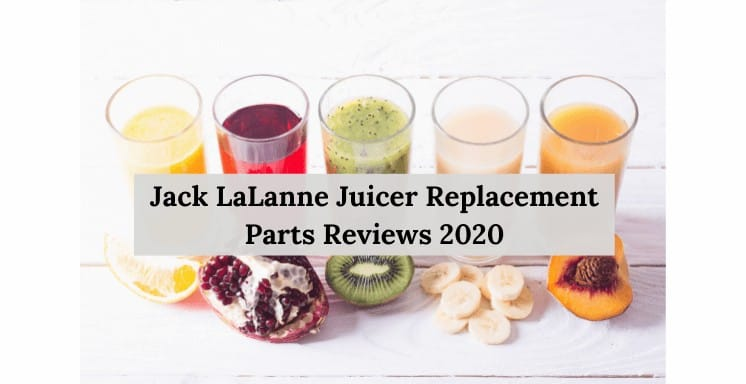 Jack LaLanne Juicer Replacement Parts reviews 2021