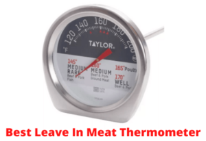 Best Leave In Meat Thermometer